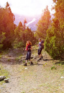 Hikers on forest trail