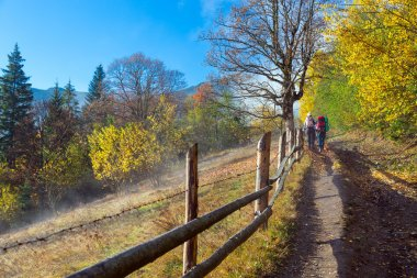Two Hikers Walking on Rural Trail among Autumnal Forest