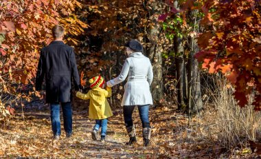 Two Generation Family Walking in Autumnal Forest Rear View