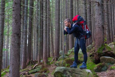 Pensive Male Hiker Staying on Stone in Forest