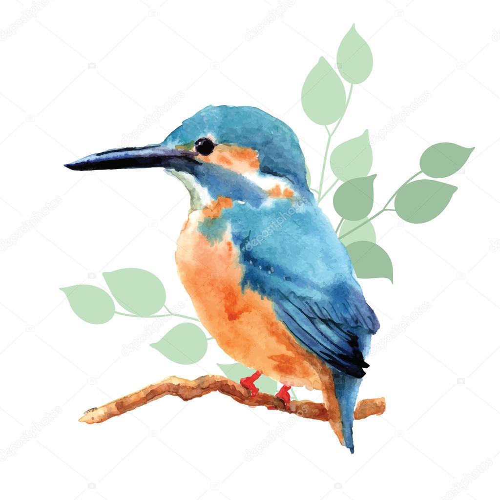 New Paint Hand Drawn Watercolor Bird Stock Vector 169 Radhanamini