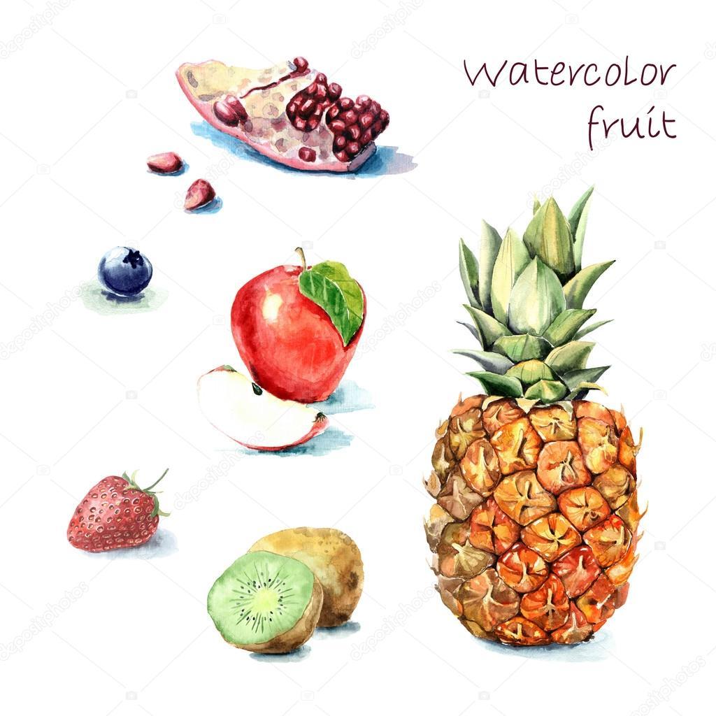 Hand drawn watercolor fruits.