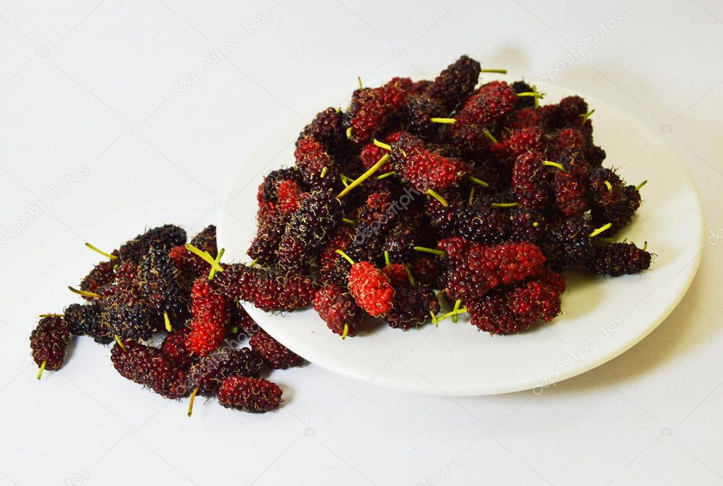 Mulberry on the dish