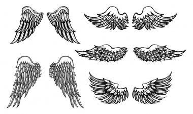 Hand-drawn Wings, vector set