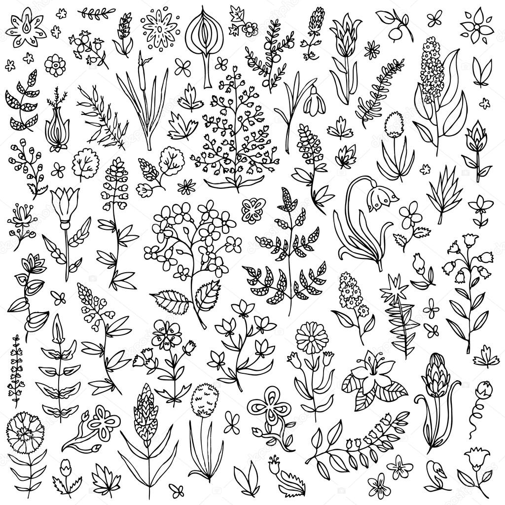 Plants and flowers set