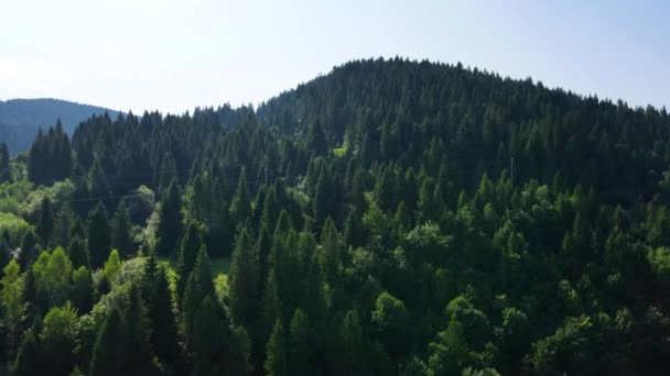 inematic aerial view of the endless mountains and forests of southern Slovenia. Drone flying through the forest