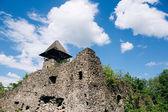 Fotografie zříceniny starého hradu