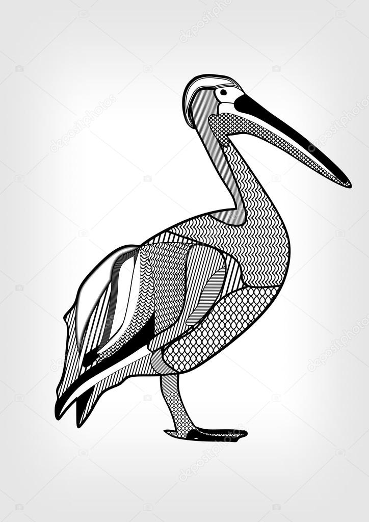 Черно белый эскиз тату с цветами: Пеликан, черно-белый рисунок птицы воды с частями тела