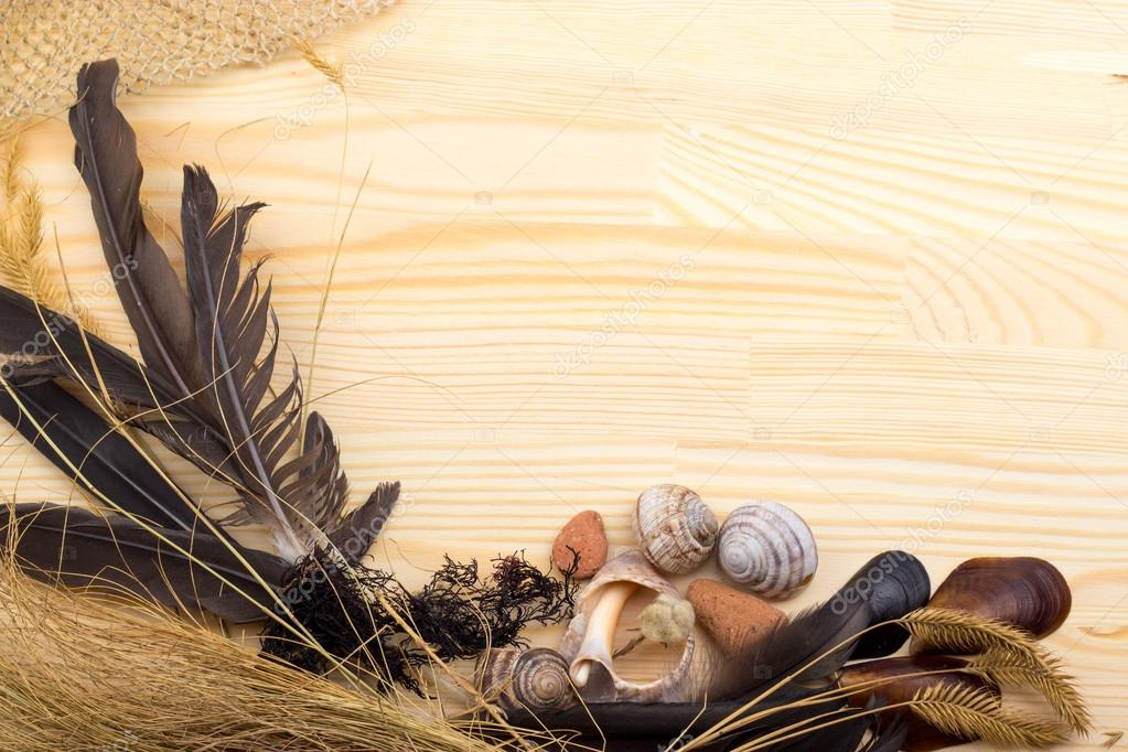 feathers, stones, shells, grass, wild flowers, the sea, the netw