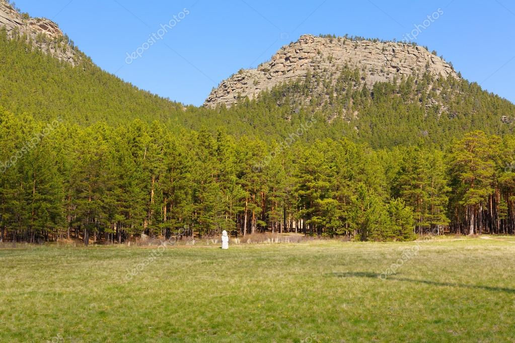 mountain forest in burabai