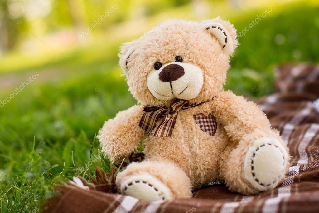 Teddy bear on the green grass