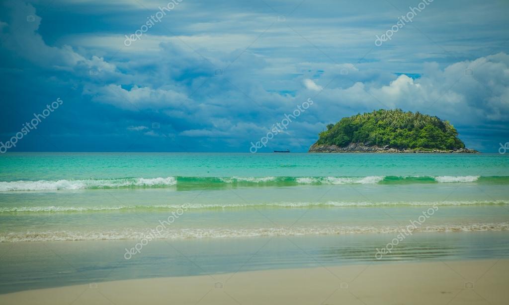 Beach  Phuket Thailand palm tree by the seabeach