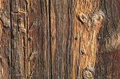 Vecchio legno superficie strutturata