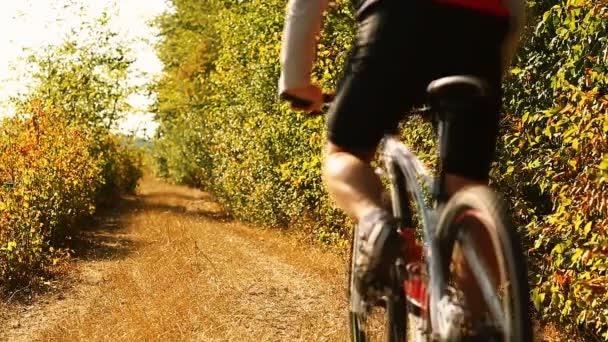 Horské cyklisty, jízdu na kole v lese. Muž na kole Mtb na stopě trati