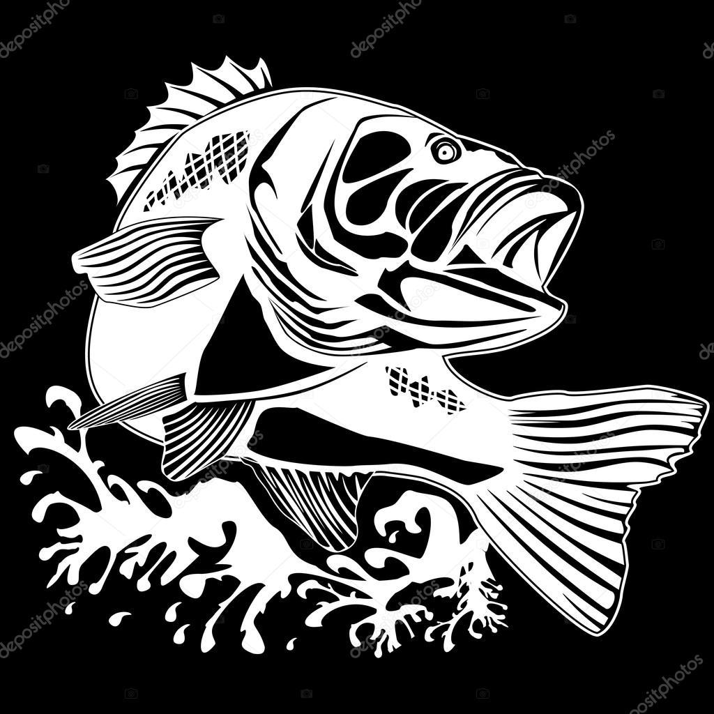PERCH FISH BLACK