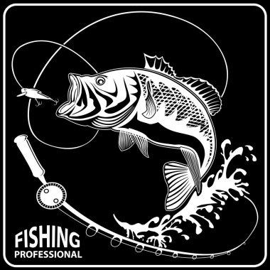 PEACH FISH ISOLATED BLACK 1