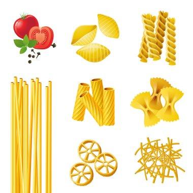 different pasta types