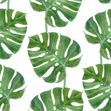 Watercolor monstera leaf seamless pattern on white background stock vector