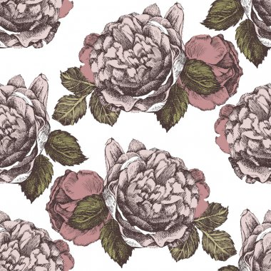 seamless ornament with hand drawn roses