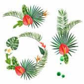 Akvarell trópusi növények, a formatervezési minták