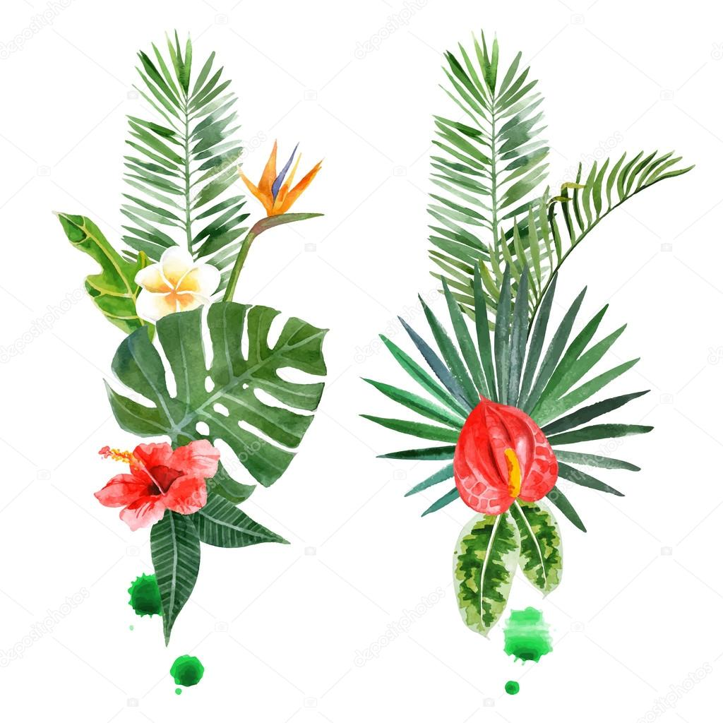 watercolor tropical plants for your designs