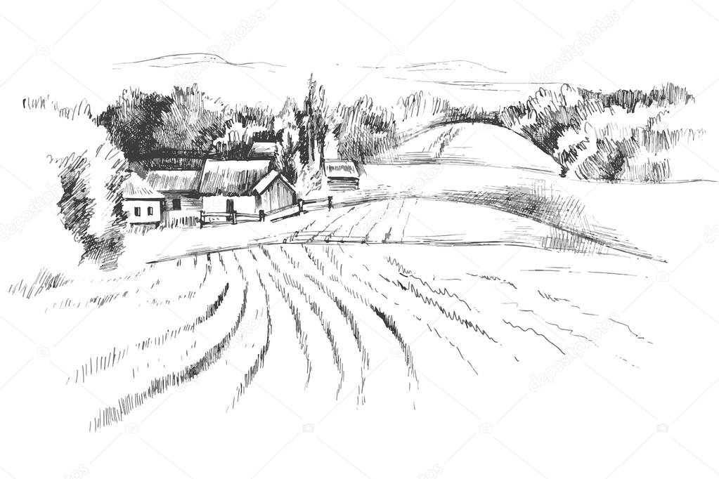 Hand drawn landscape with fields
