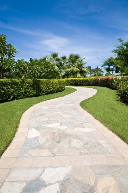 Curved stone footpath in a garden