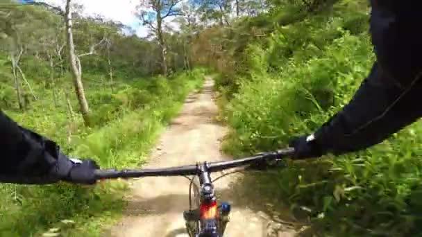 Horská kola na polní cestě