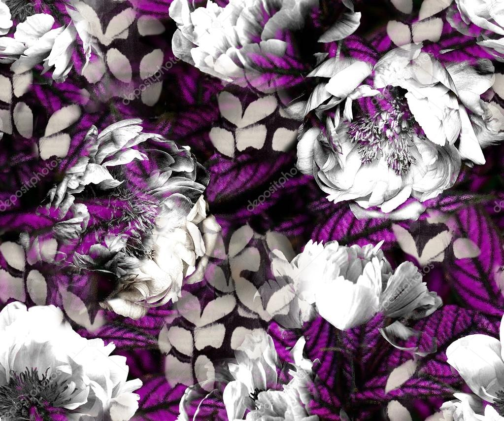 Black and white peonies with purple texture feathers stock image