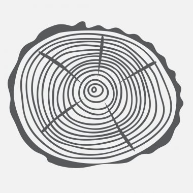 Annual rings of the cut tree