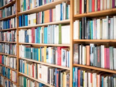 Bookshelves stock vector