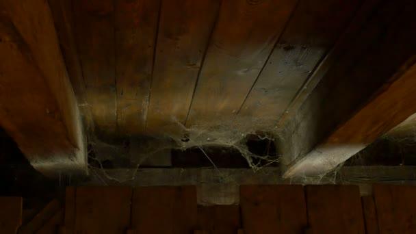 Pavučina v podkroví