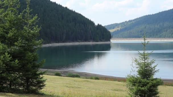 Přehradní vodní a lesní