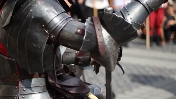 Knight in Steel Armor