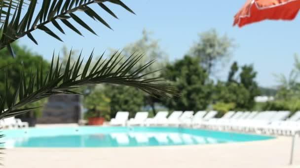 Blick auf Pool und Lounge