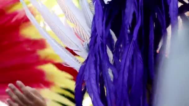 Feathers on Samba Dancers