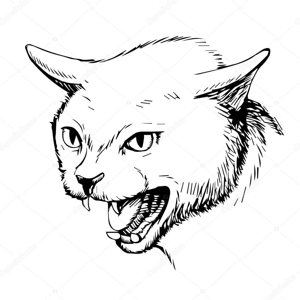 Cat Hand Drawn Stock Vector C Simplebe 112043814