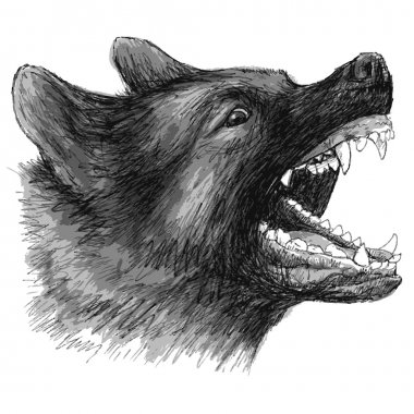 angry German Shepherd hand drawn