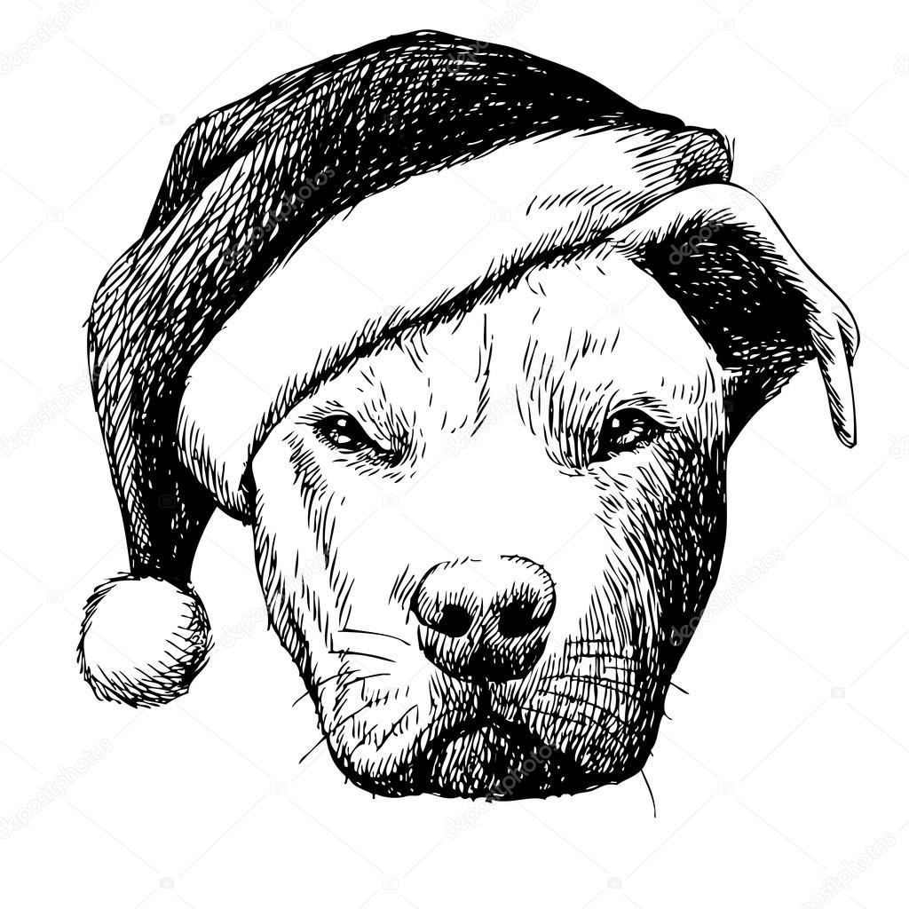 Pitbull puppy Stock Vectors, Royalty Free Pitbull puppy ...