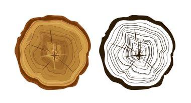 Cut tree icons, tree rings illustration