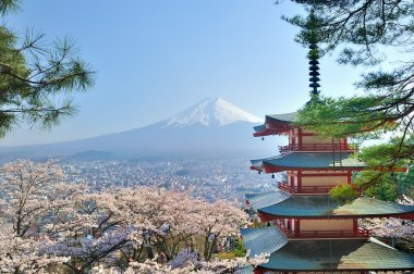 Chureito Pagoda and Fuji in Japan