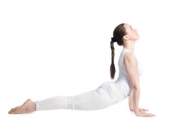 Yoga upward facing dog pose
