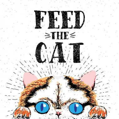 Feed the cat. Vector illustration with hand drawn lettering on texture background.
