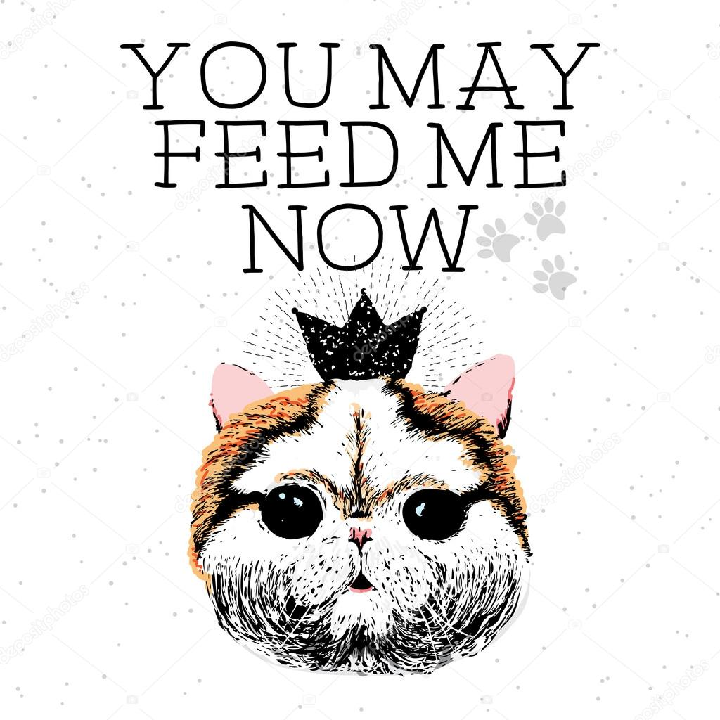 Feed me amateurs