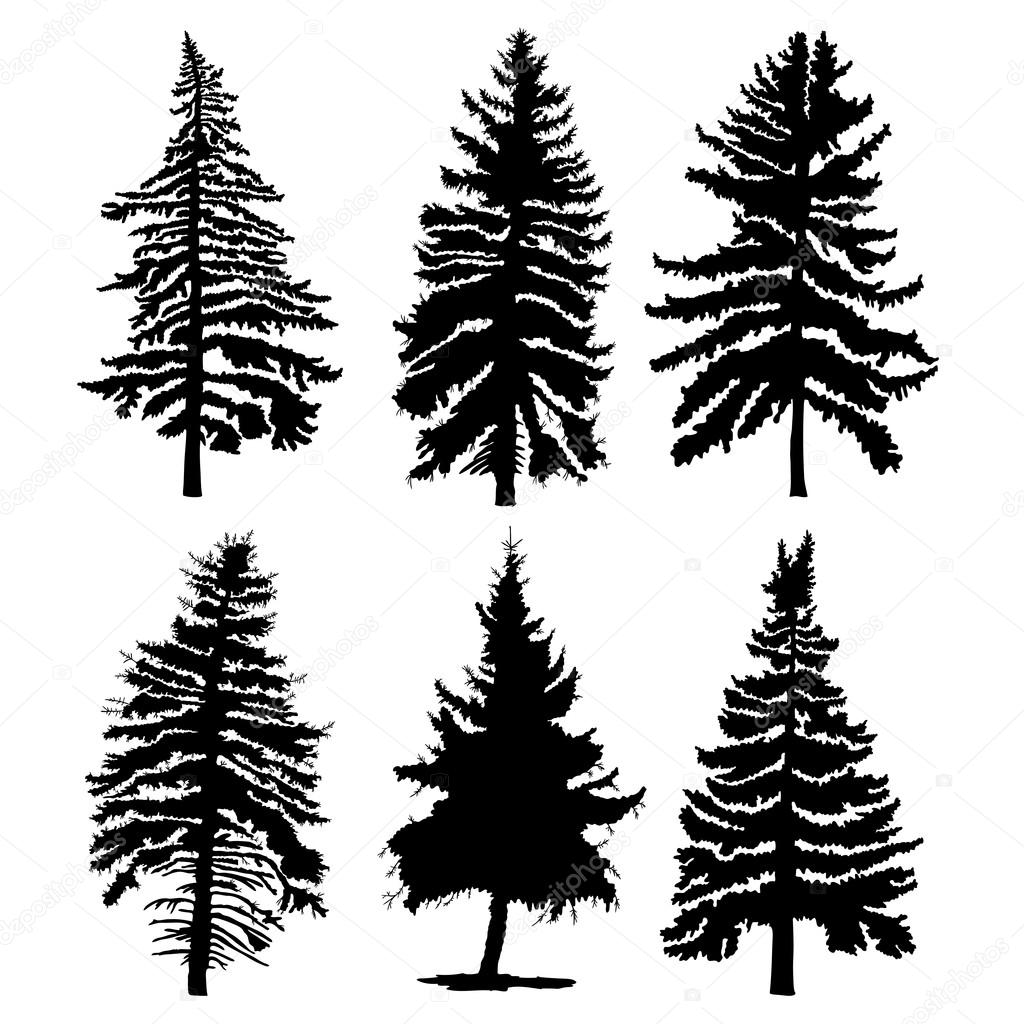 set of pine trees silhouettes stock vector goldenshrimp 119204842 rh depositphotos com pine trees vector png vector pine trees