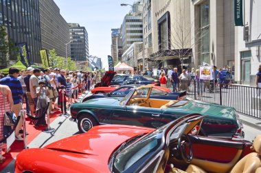 Annual Yorkville Exotic Car Show