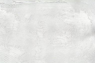 Oil paints on a canvas palette.