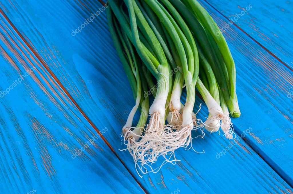 Spring onions also known as salad onions, green onion or scallions on blue wood table. Rustic background with free text space.