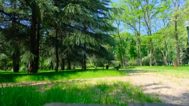 Botanický park, pěší stezka pro lidi chtějí, aby sport a zelená tráva a strom.