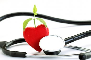 Red heart and stethoscope on white background